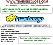 Hadoop Online Training TrainersGlobe 100 Job Placement