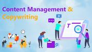 Tech ICS | Content Management and Copywriting | Services